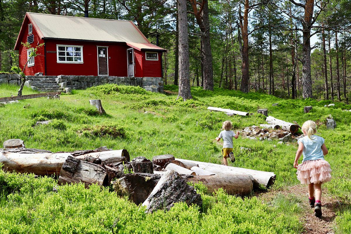 Barna vil storkose seg på Flørlistølen, som du kan booke i sin helhet på ut.no.