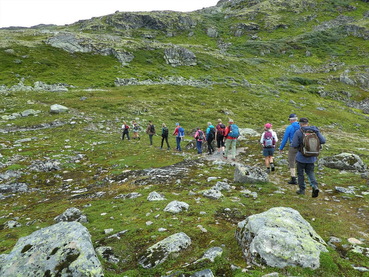 Tur Uppsete - Vatnahalsen, med zipline til Kårdal, august 2021