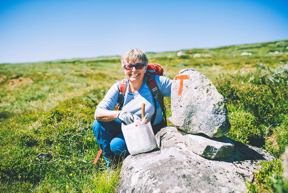 Aase merker sommersti på Hardangervidda 2018