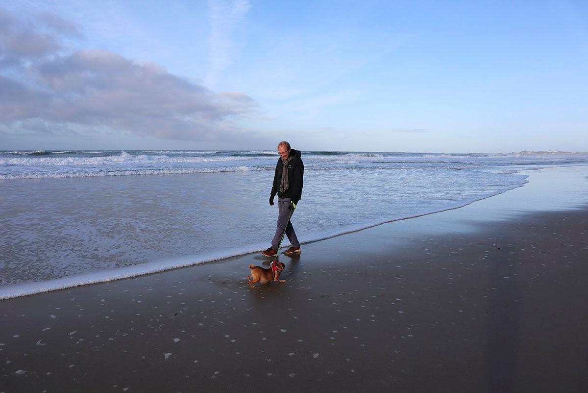 LADER OPP TIL NY SESONG I JUNI: Nå går storbonden tur på over en mil til dagen, sammen med hundene sine, og kan ikke tenke seg en dag uten tur. Her går han langs Borestranden, rett nedenfor plassen hvor han har sin vinterhytte.