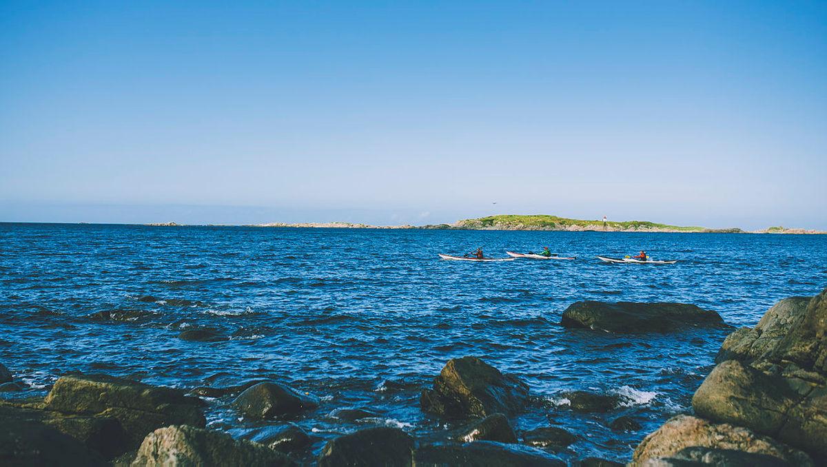 Bilder fra majestetiske Vesterålen under tredje uken av Monsen minutt for minutt. Her fra siste del av Dronningruta langs kysten fra Stø mot Nyksund.