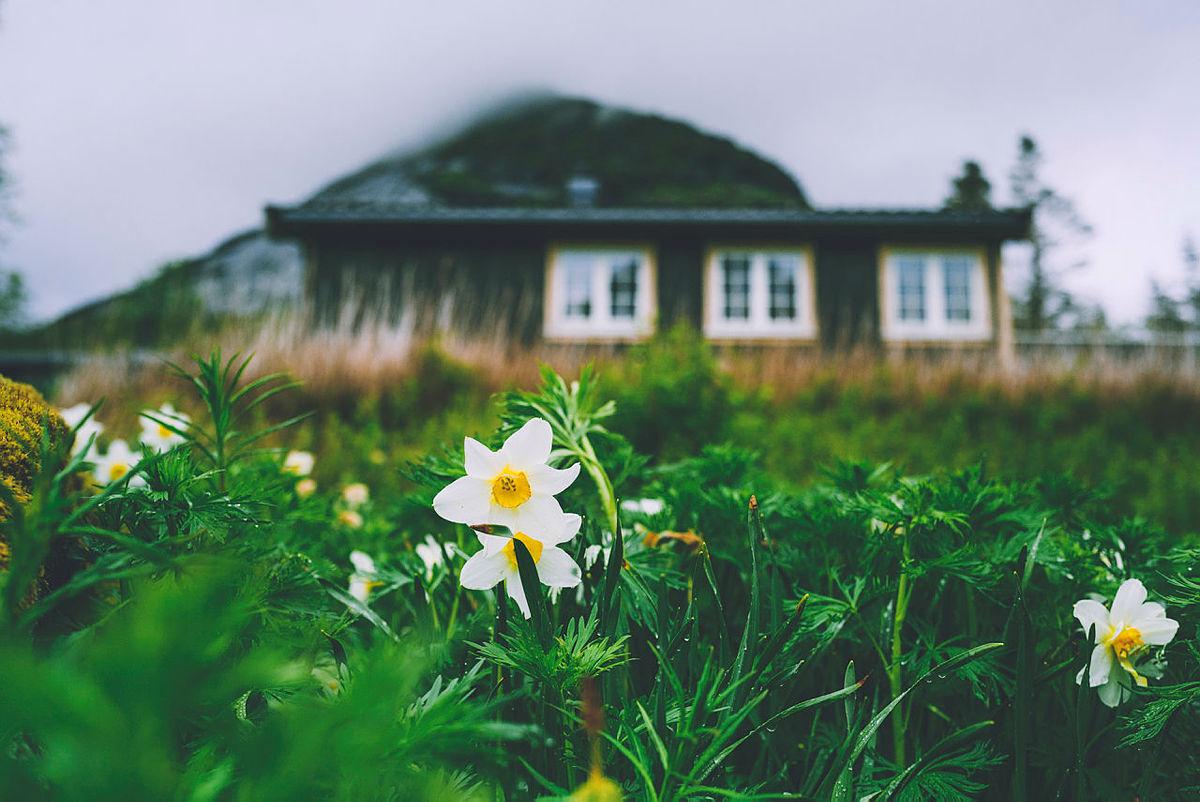 Midt blant Lofotens luftigste topper ligger Selfjordhytta.