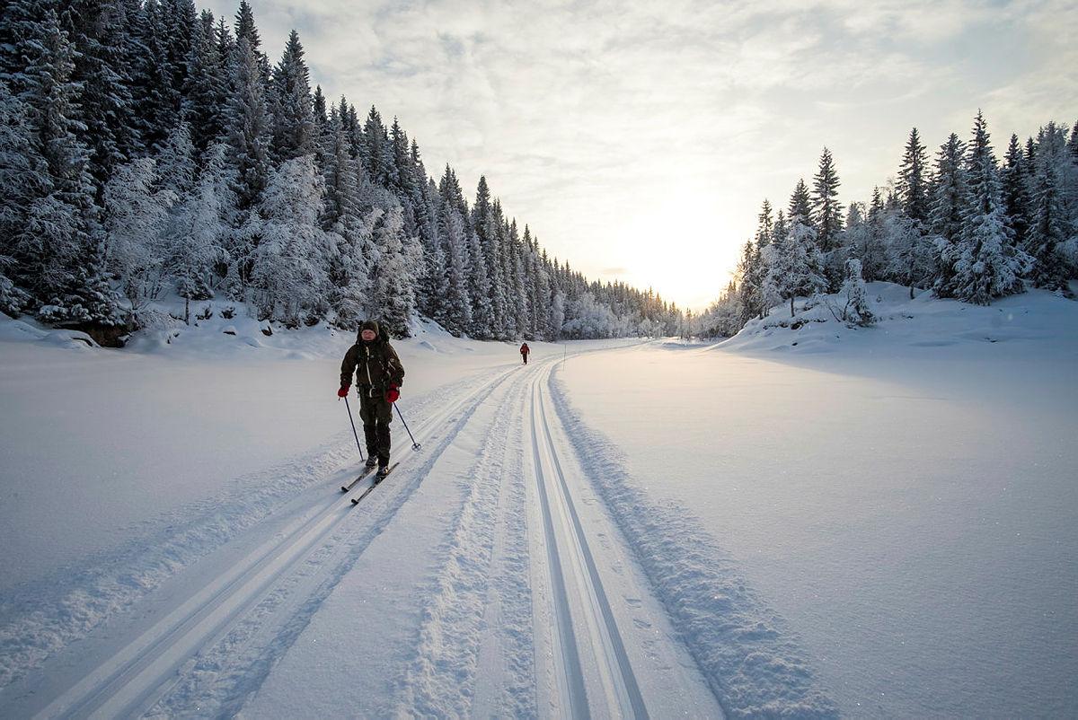 På skitur i Nordmarka.