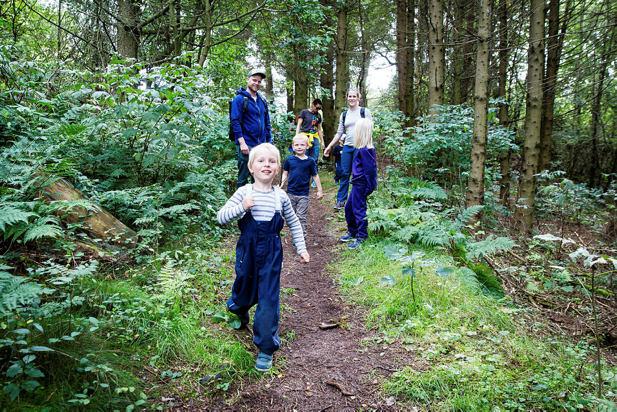 Leke og oppdage naturstien på de herlige stiene rundt Dyrsnes.