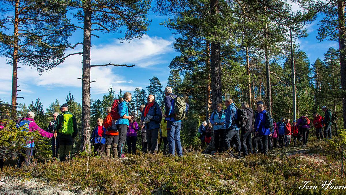 Turgruppa Ut på tur Eiker på tur til Saukollen