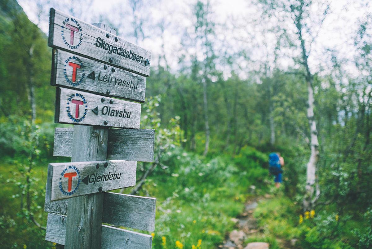 Andre uken av minutt for minutt gikk fem dager gjennom Jotunheimen. Bildet er fra turen fra Fannaråkhytta og ned til frodige Skogadalsbøen.