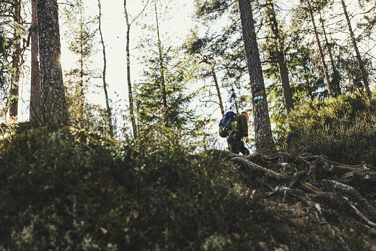 Høstferie hjemme - hyttetur i skogen