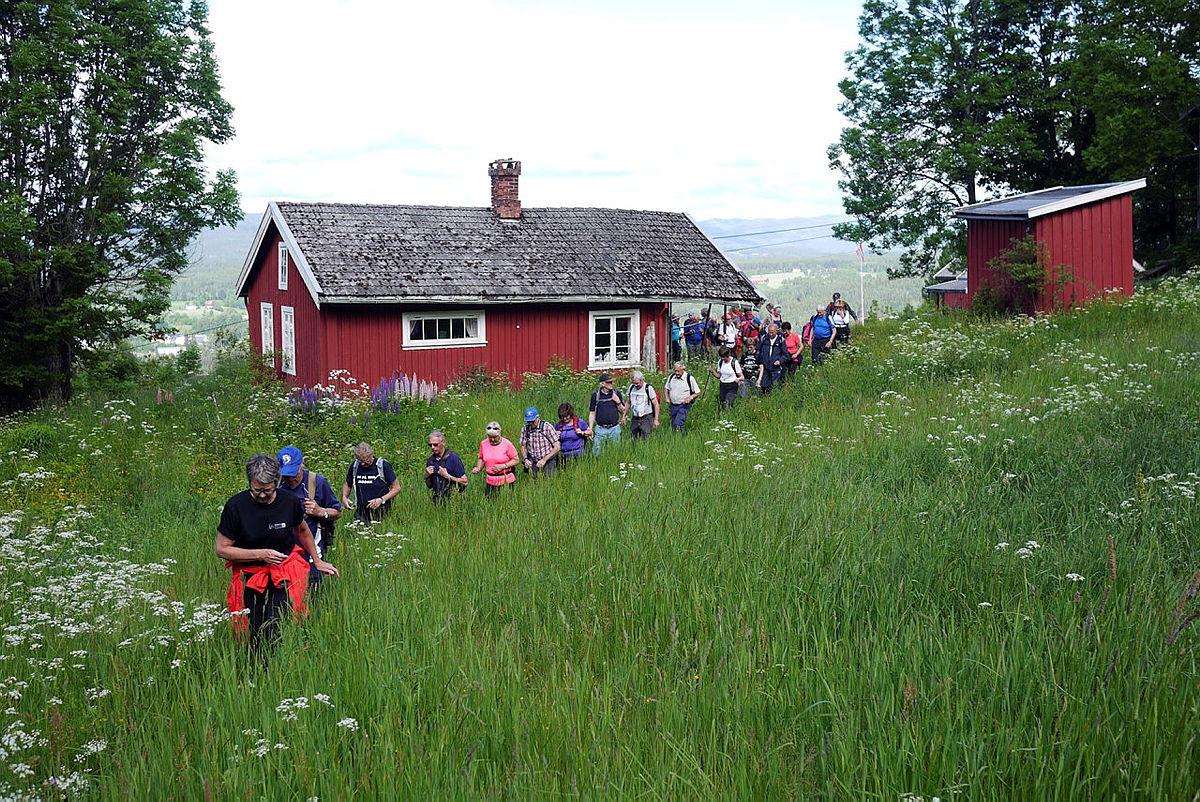 Turgruppa Ut på tur Modum i Heggenåsen