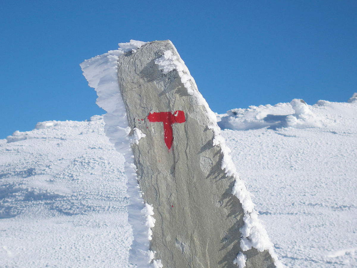 Bilder fra fellestur mellom Nørdstedalseter og Sognefjellshytta. Andre etappe av MASSIV.