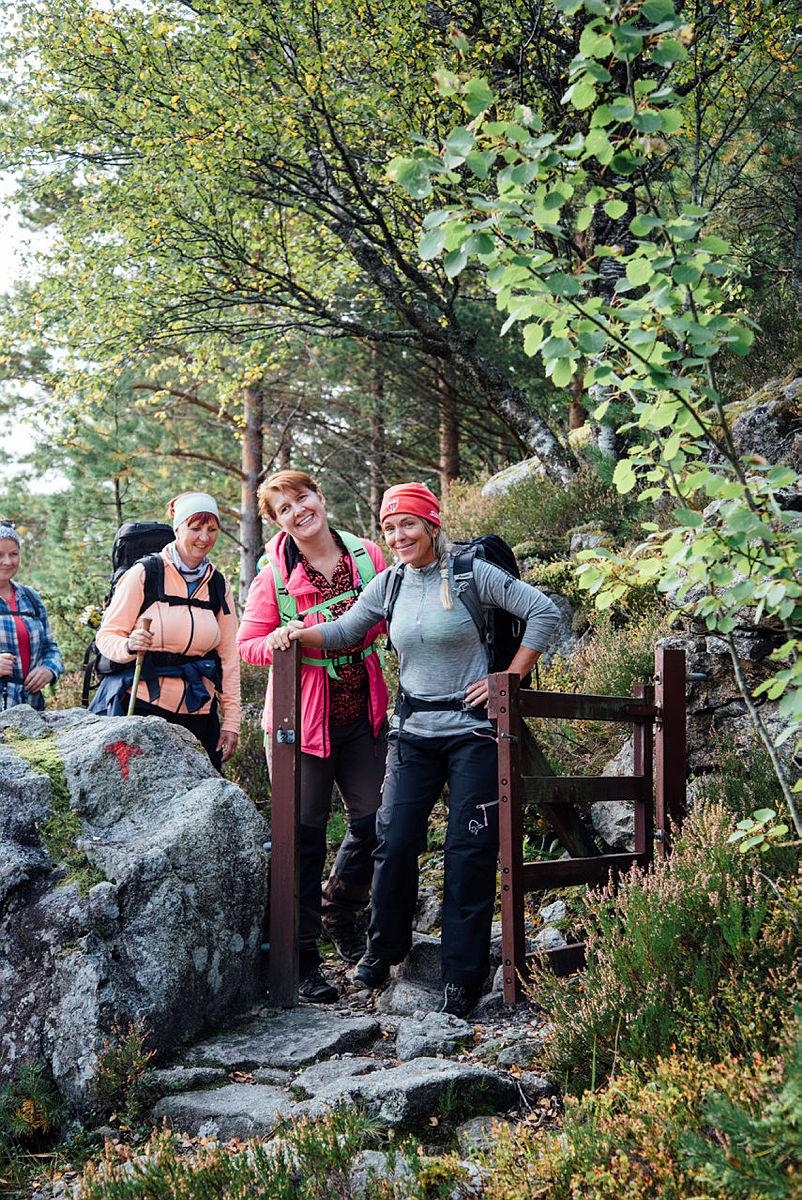 DNT Tilrettelagt inviterer til lavterkseltur i Sandnesmarka.