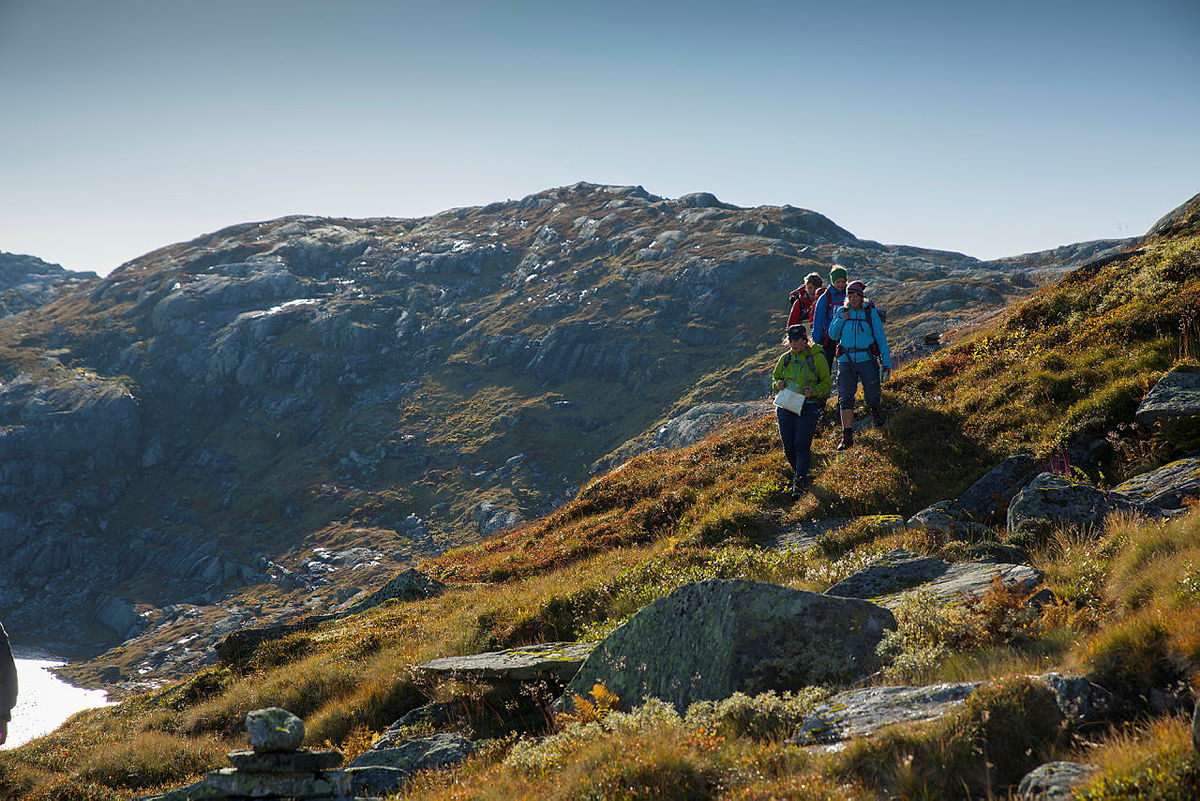 SignaTUR byr de ypperste langturene i Norge som gir spektakulære vandreopplevelser. Flere av dem går gjennom natur og kulturlandskaper i verdensklasse.