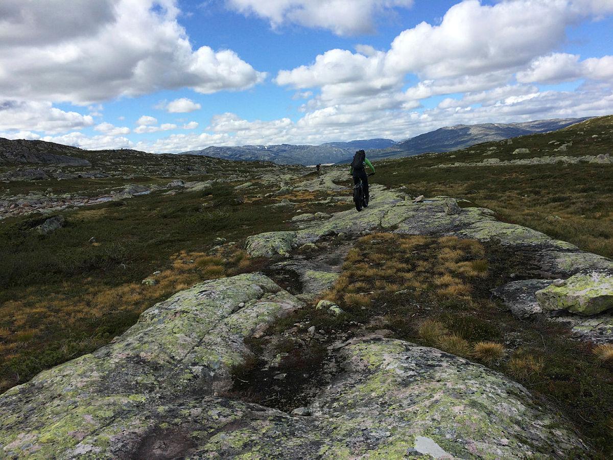 DNT Sør fatbike tur fra Hovden via Tjørnbrotbu til Geiskelid.