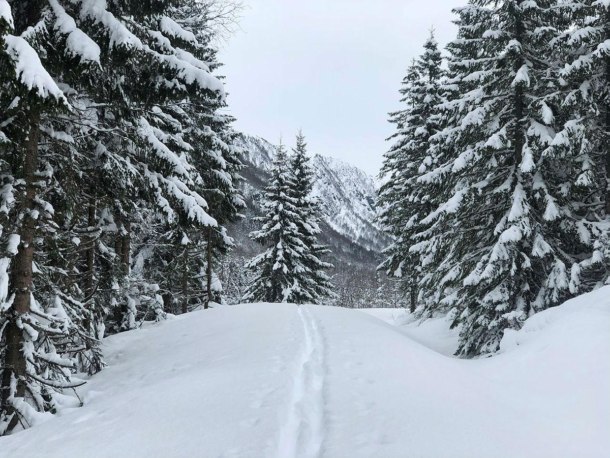 Bra skiføre i Langedalen