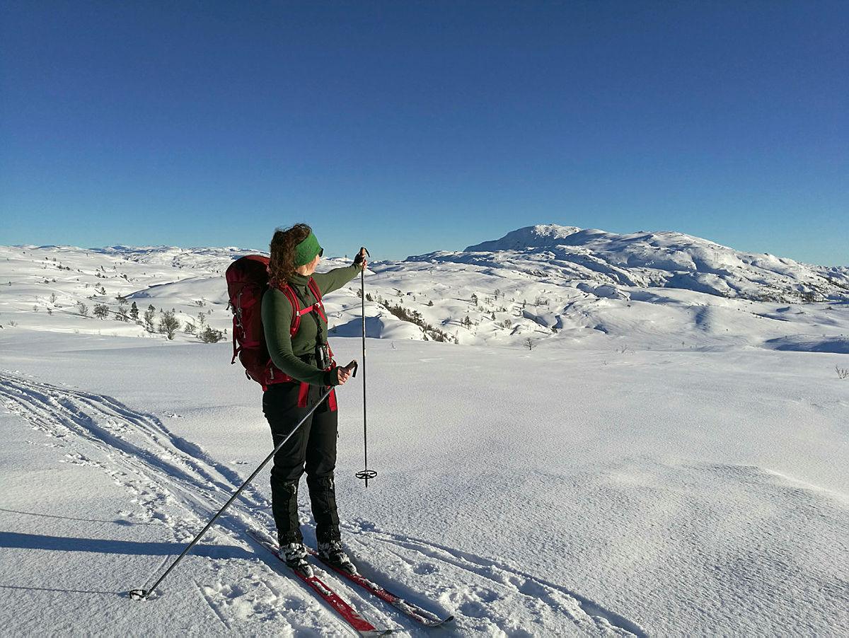Fjellskitur til Brøknipa. På vei tilbake til Njåstad.