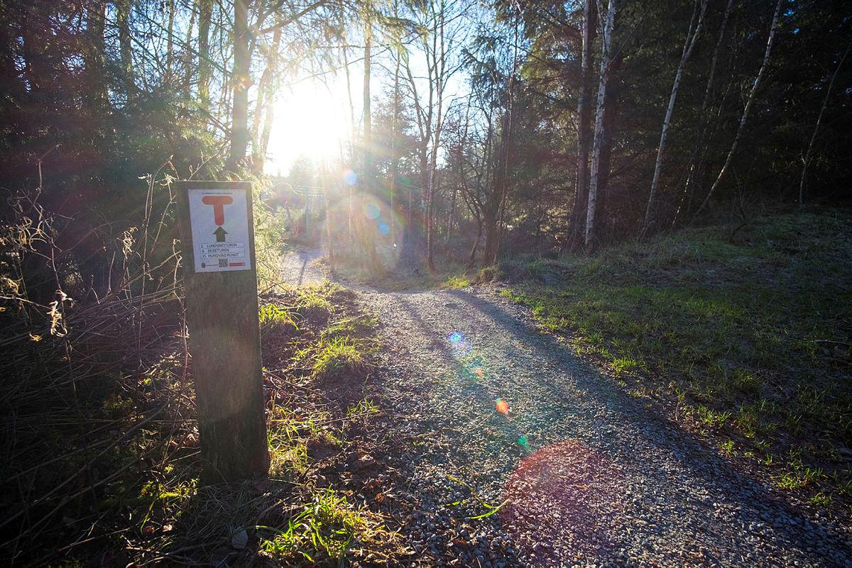 52 hverdagsturer i Stavanger. Lundsnesturen og Hundvåg rundt. Fra sjøen ved Trollskogen.