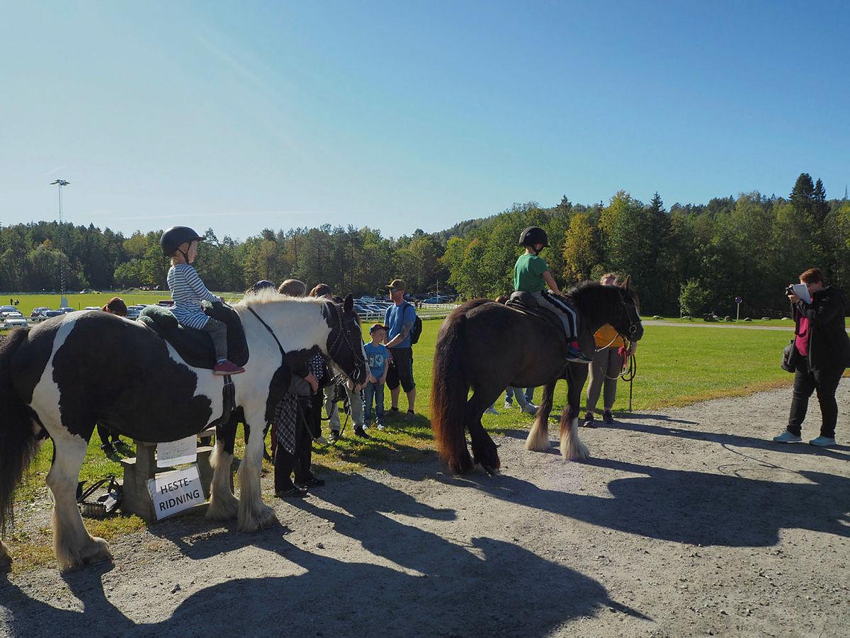 Gøy å ri på hest!