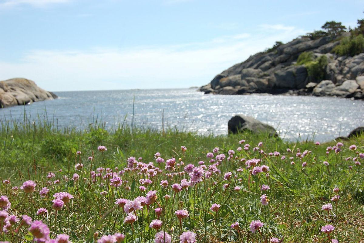 Fra kyststien på Østerøya