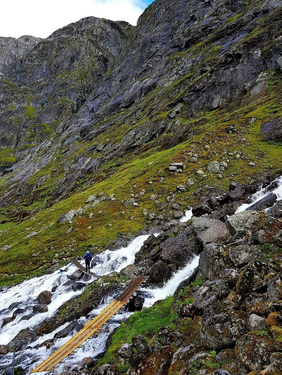 Eggenipa 1338 moh