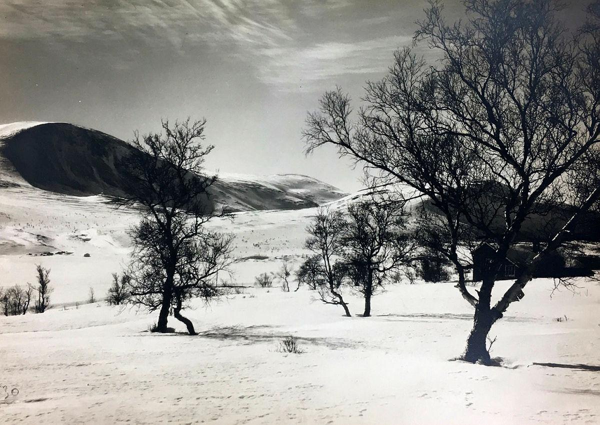 Historiske bilder fra Femundsmarka