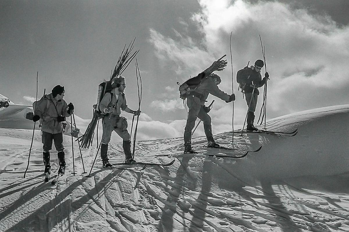 Kvisting i fjellet gjennom 50 år
