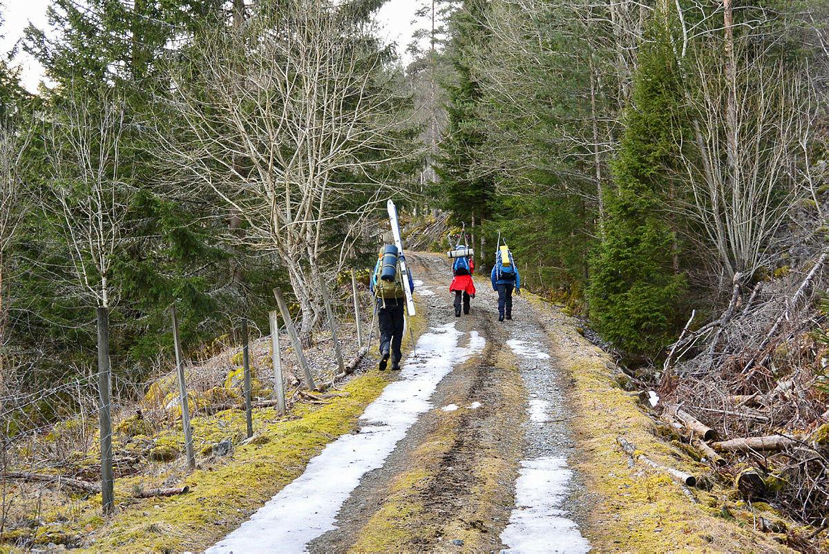 Ansatt-tur fra Bleskestad til Haukeliseter 8.-11. mars 2019. Her fra starten av turen ved Belskestad hvor skiene måtte bæres et godt stykke før en nådde snøen, og kunne gå videre på ski til Bleskestadmoen.