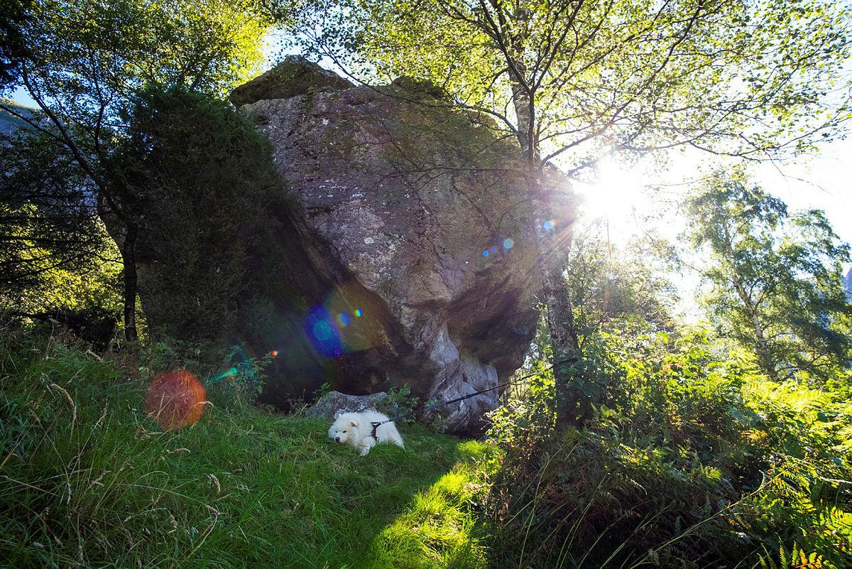 Nok av tid til å nyte naturen i vakre Lysedalen på fritiden.