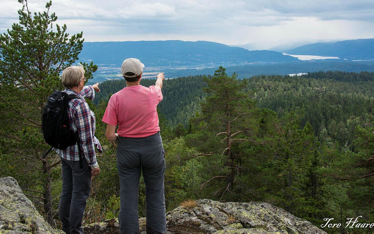 Turgruppa Ut på tur Eiker på Lina på Holtefjell
