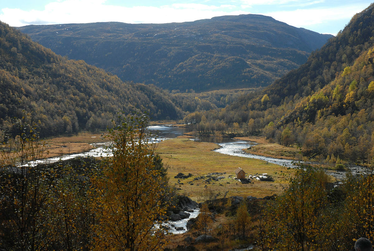 Utsikt fra tomten på Kvitlen