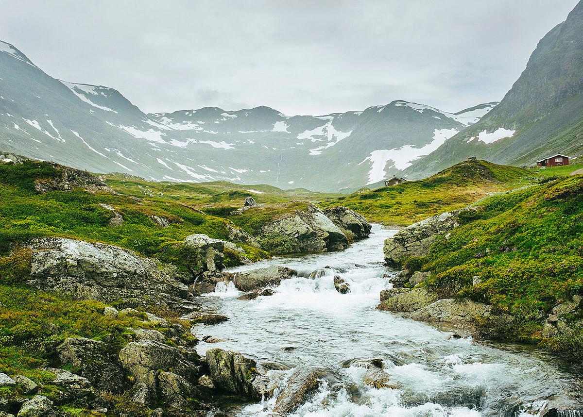 Funn av Harepest i Sør Norge