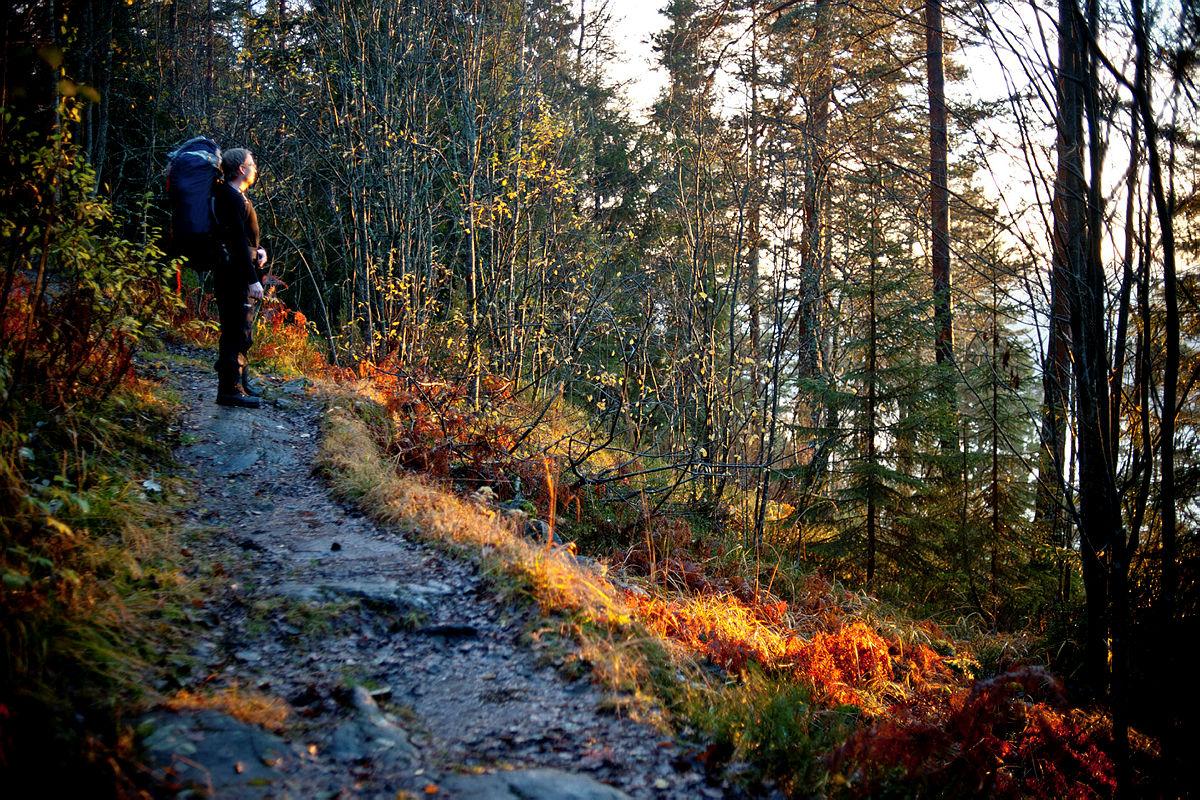 De gode høstferietipsene i og nær Oslo