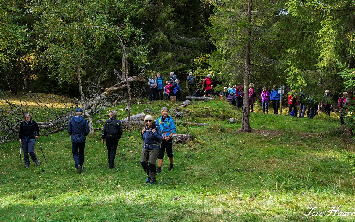 Turgruppa Ut på tur Eiker går Haugfosstien i Skuterudåsen mellom Blaafarveværket og Koboltgruvene i Modum