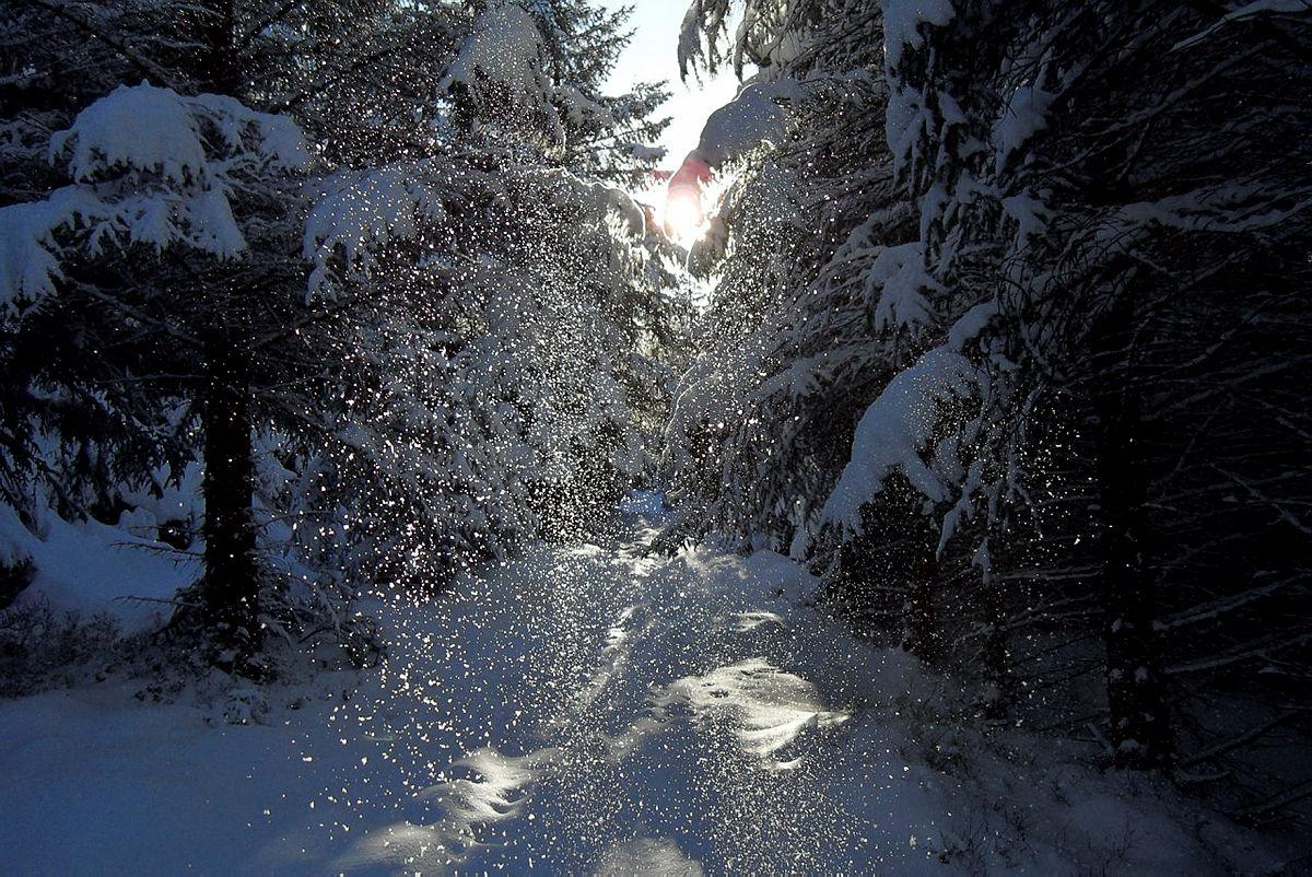 Vinterstemning i Kjerrgardsåsen