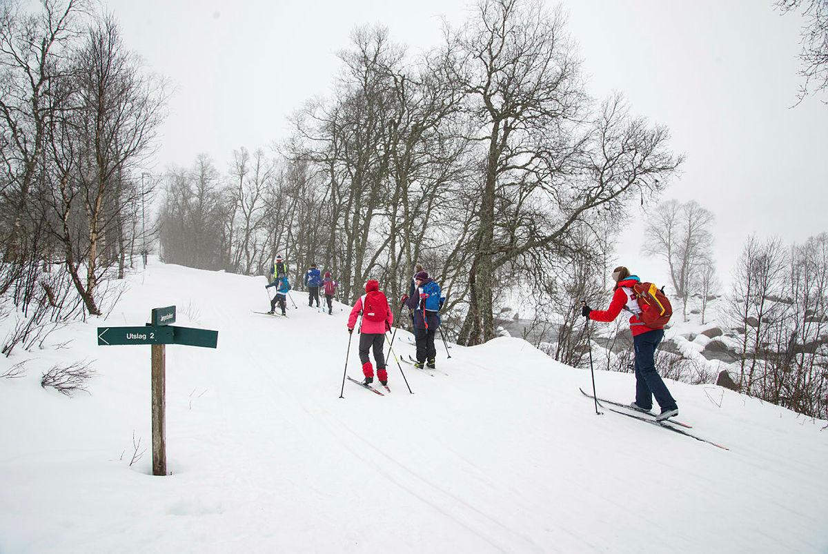 Skiskolen