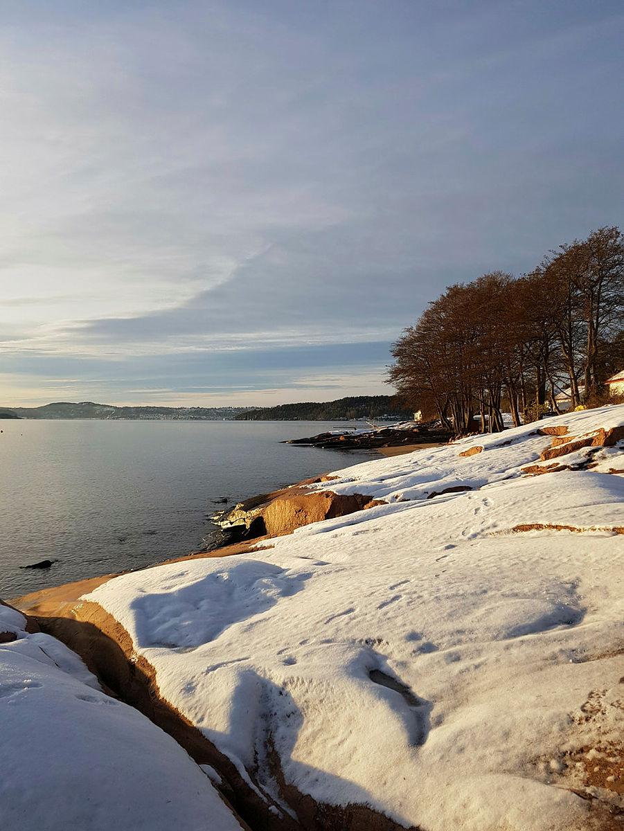 Turgruppa Ut på tur Sande & Svelvik på Kyststien