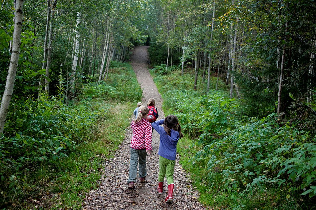 Ta med barna på tur i skogen eller.......