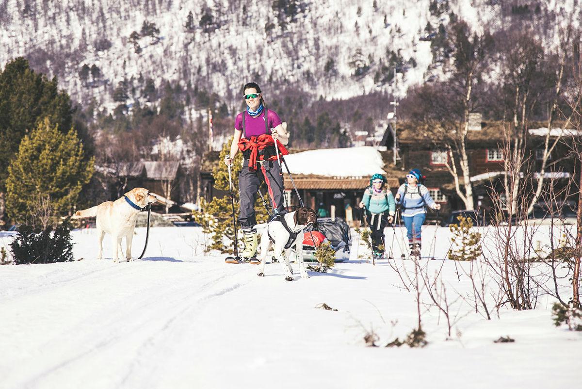 På skitur fra Sota Sæter