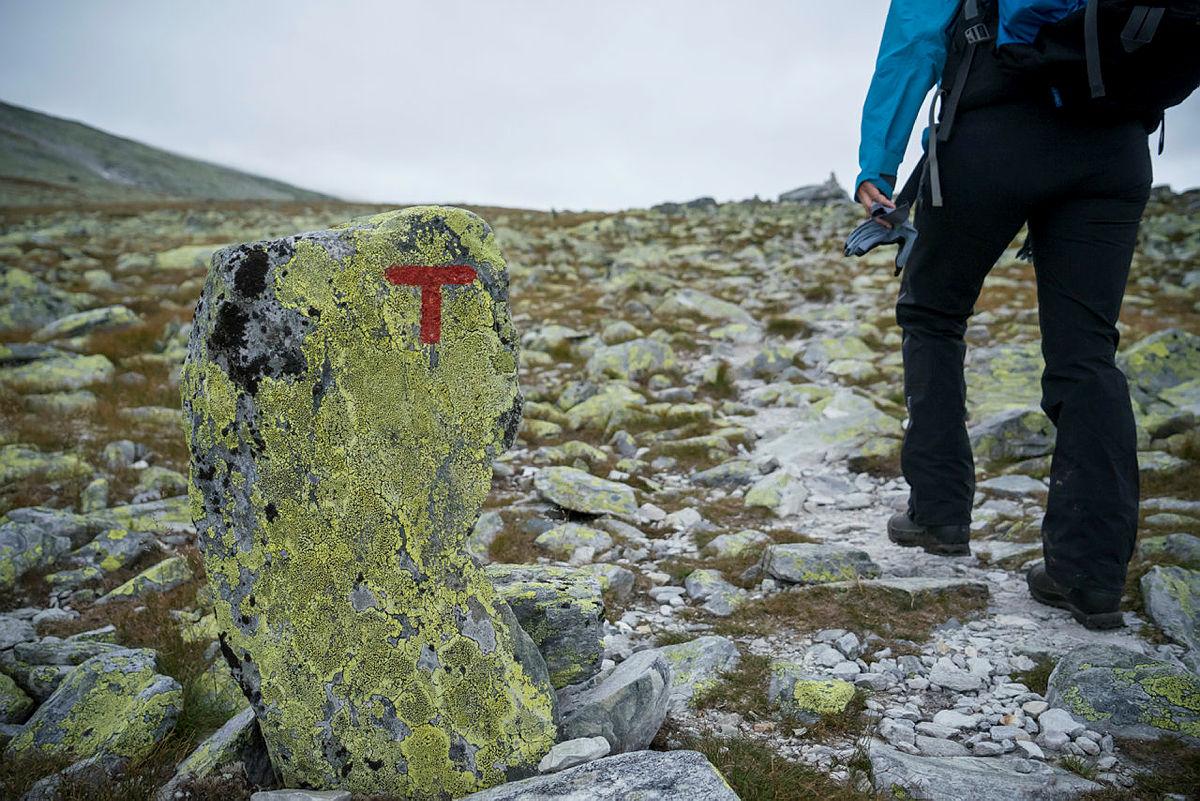 Det skjer ikke så ofte, men nå har vi merket en ny rute i fjellet..