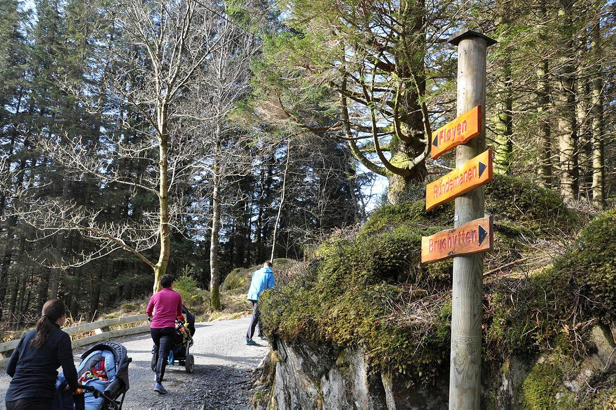 Turvei til Fløyen