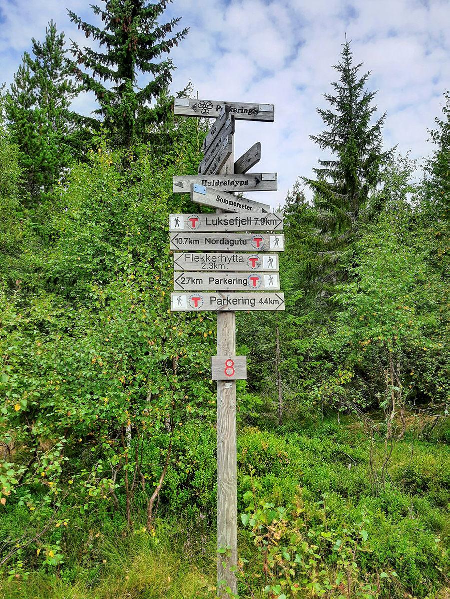 Vil du være med å bestemme Skein Turlags retning i 2021?