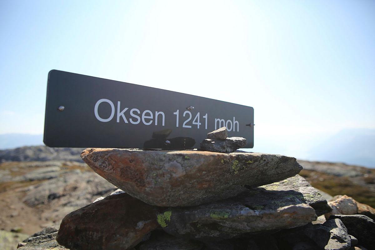Norsk kvalitetsrikt storfe