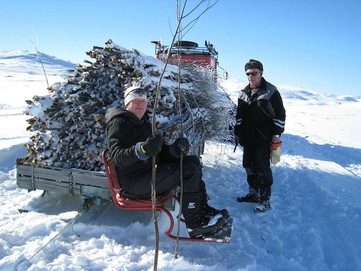 Vintermerking med kvister, rutenettverket i Skarvheimen.
