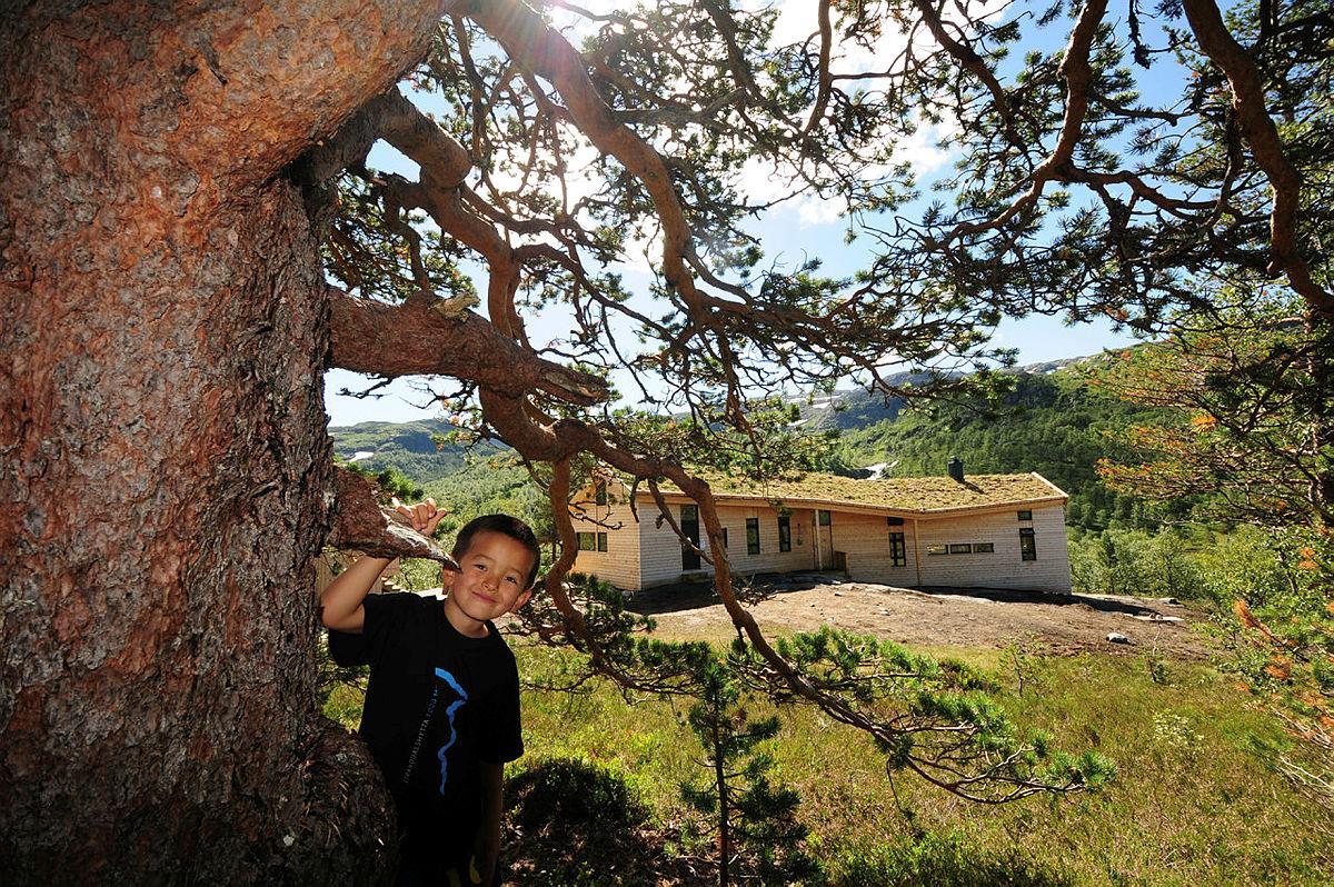 Jonstølen er både moderne, barnevennlig og en fantastisk plass for barna å oppdage naturen.