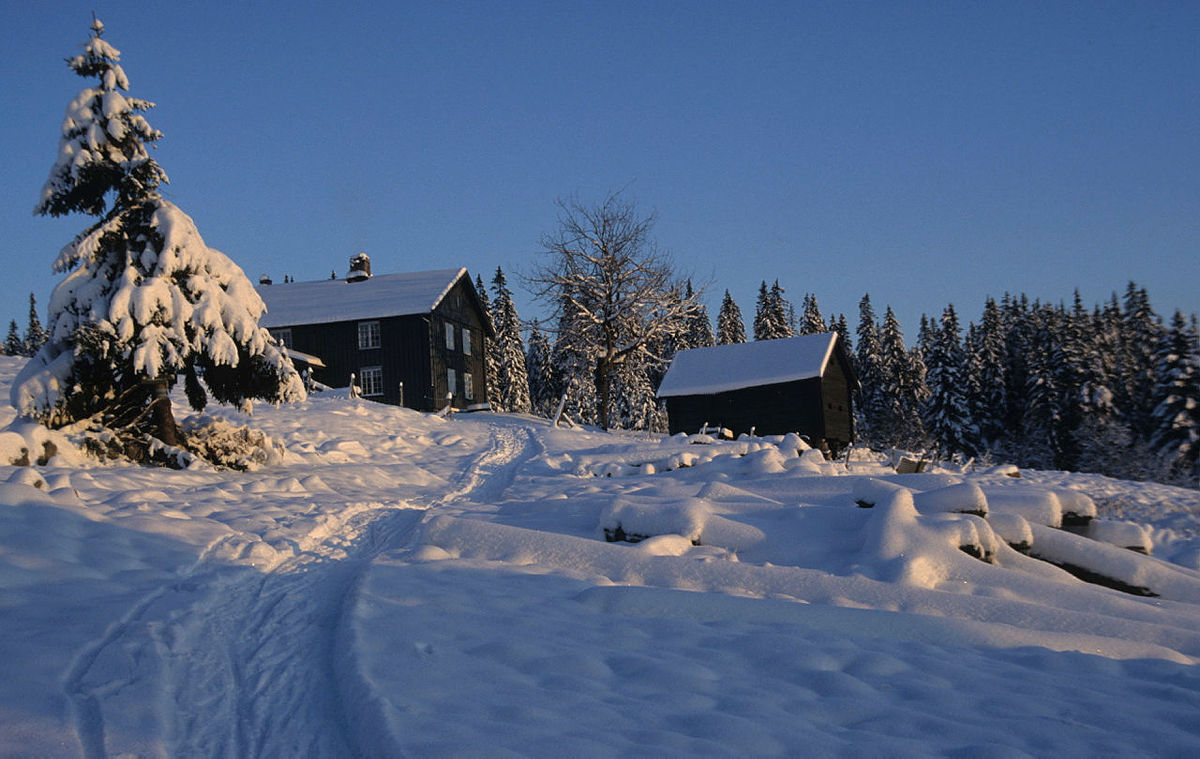 Vinterstemning på koselige Snellingen.