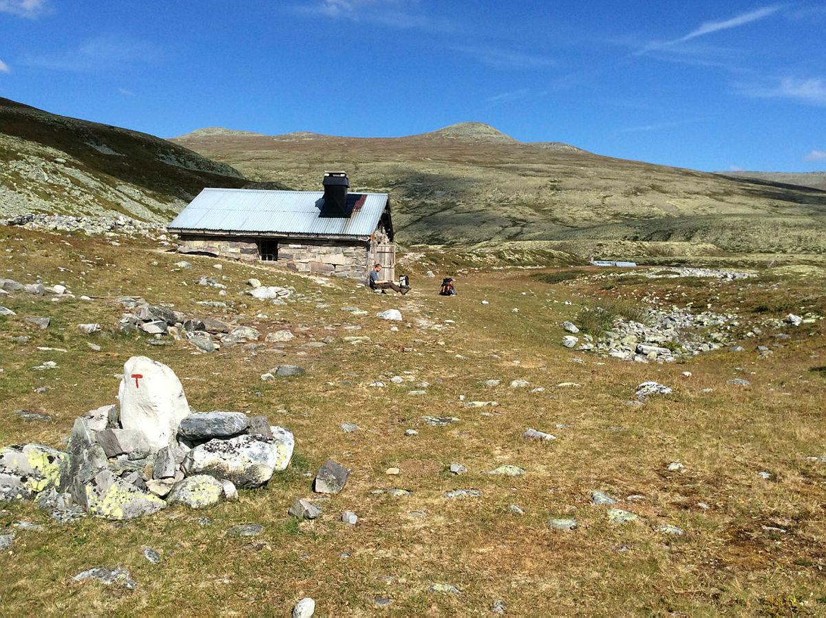 Fredag: Hornflågan og gamle fangstgraver