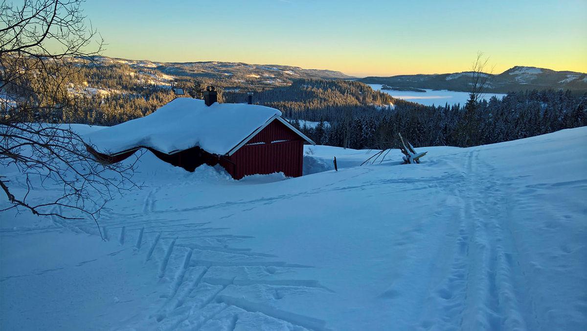 Vakkert vinterlys ved Solumhytta.