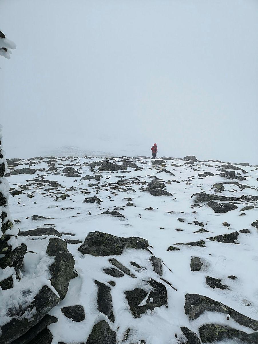 Tur til Kvamefjellet