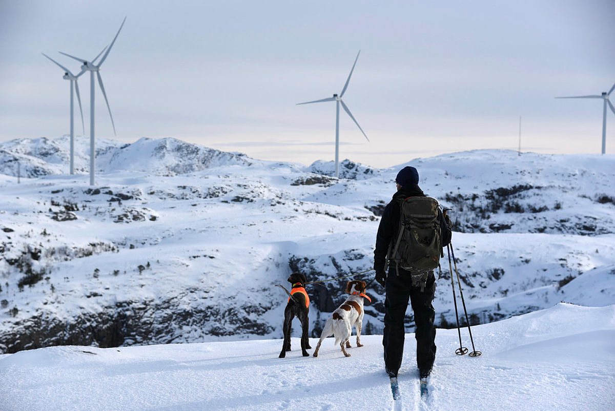 Påskemoro på Kroktind i Lofoten! Hunden Lusken er med på leken.