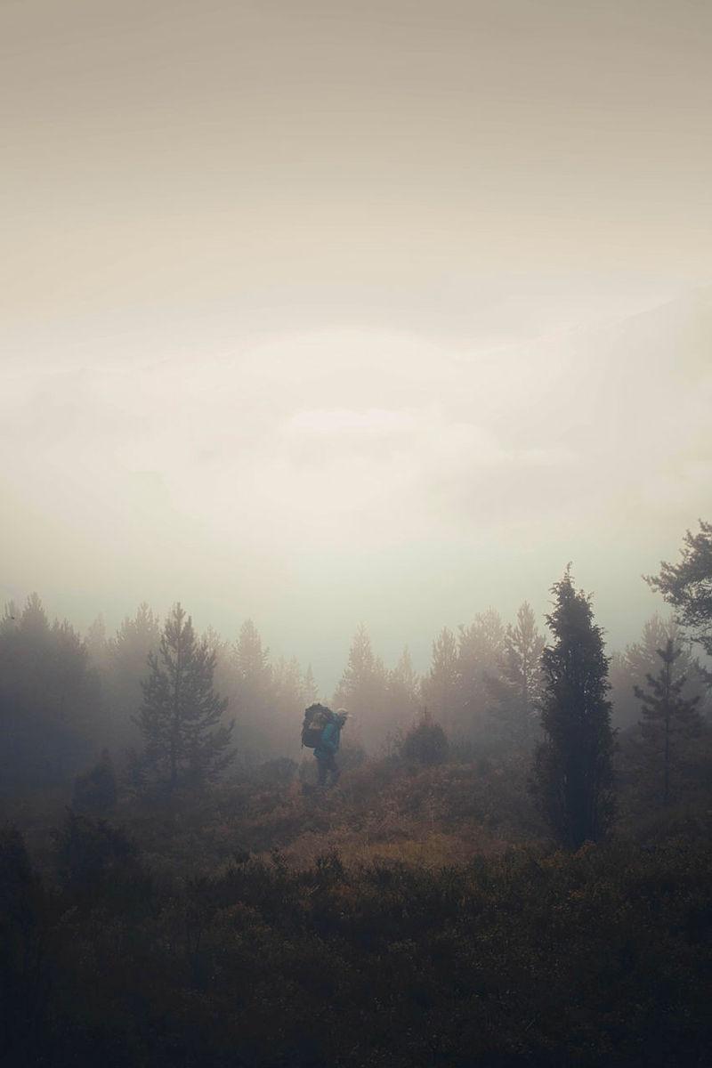 Overnattingstur i Kaupanger med tåke liggende over skogen. Finalist i fotokonkurransen høsten 2018.