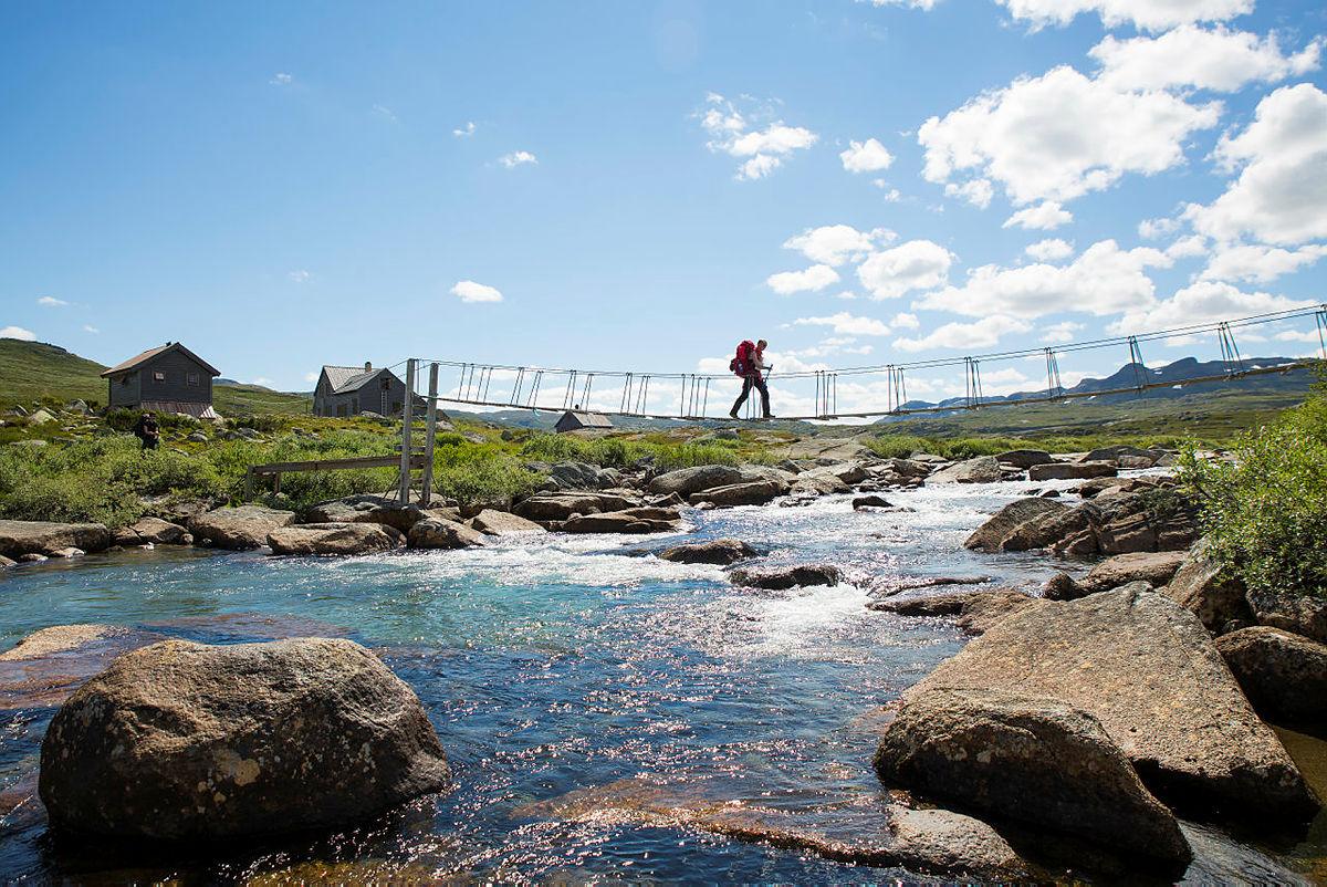 Hadlaskard på Hardangervidda vest