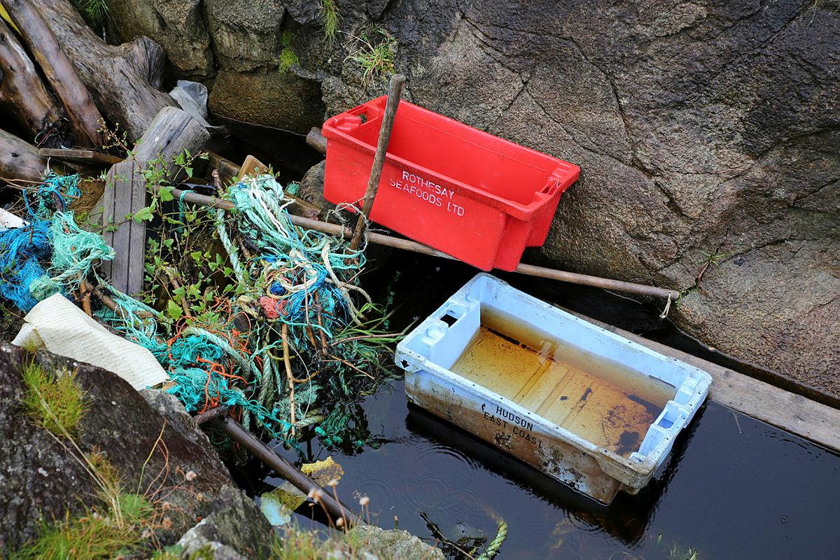 Skulle vi ringt til Rothesay Seafoods og bedt dem hente fiskekassen sin? Kanskje de savner den?